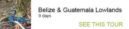 Belize & Guatemala Lowlands
